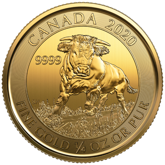 Gold Canadian 1/4 Ounce Bull